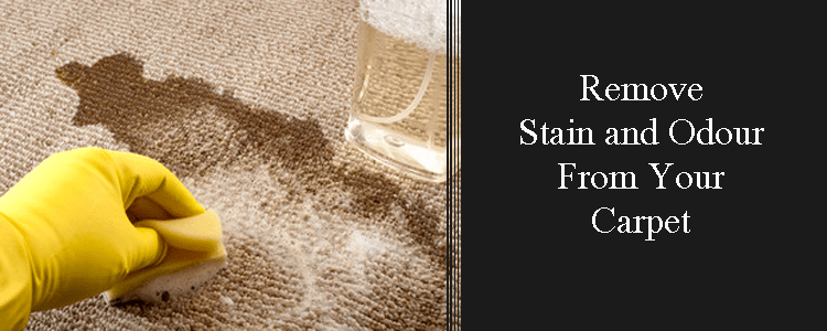 Remove stains & odour from Carpet